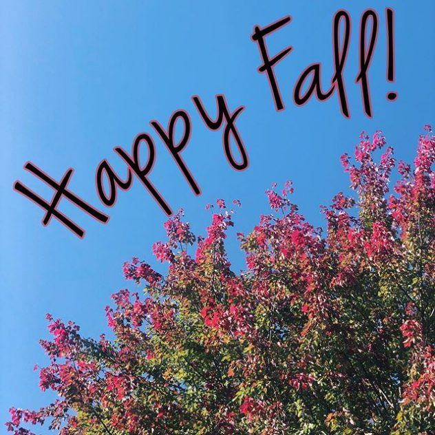 Happy Fall. A photo of trees with their leaves changing colors.